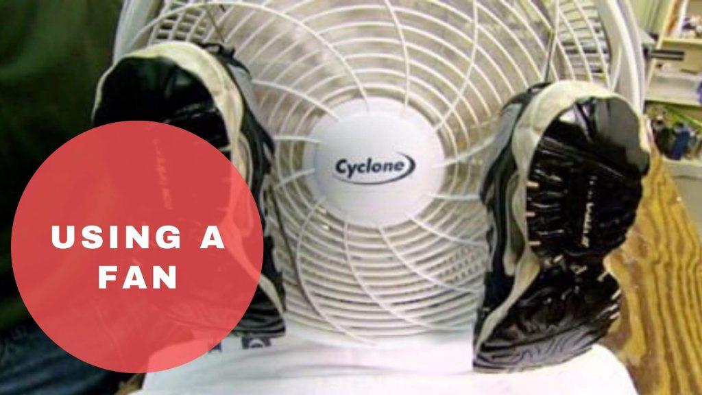 using a fan best way to dry sneakers